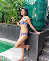 Bollywood Bikini ACTRESS in Bikini  Exclusive Galleries 004.jpg