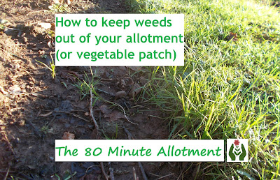 How to keep weeds out of your allotment 80 Minute Allotment Green Fingered Blog