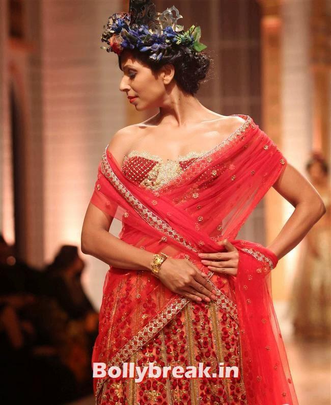 Candice Pinto, Bollywood Celebs at India Bridal Fashion Week