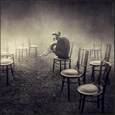 ¿Poesía versus estulticia? Francisco Acuyo