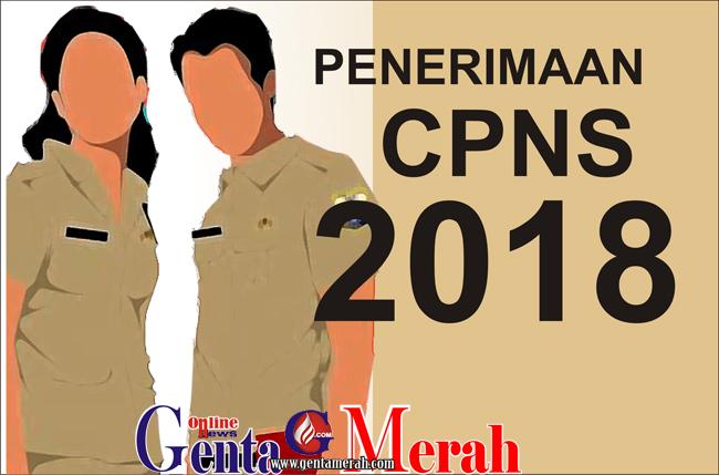 Penerimaan CPNS 2018, Honorer K2 Way Kanan Minta Diprioritaskan
