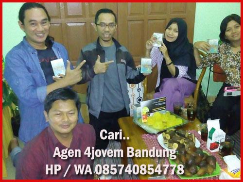 Stokis 4jovem di Bandung Jawa Barat