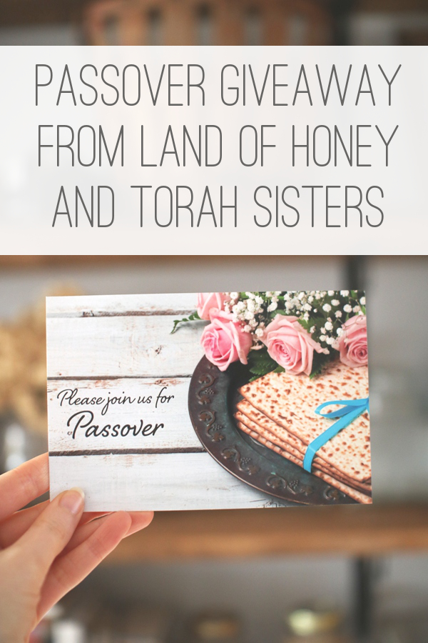 Win Passover cards and a Torah Portions coloring book | Land of Honey