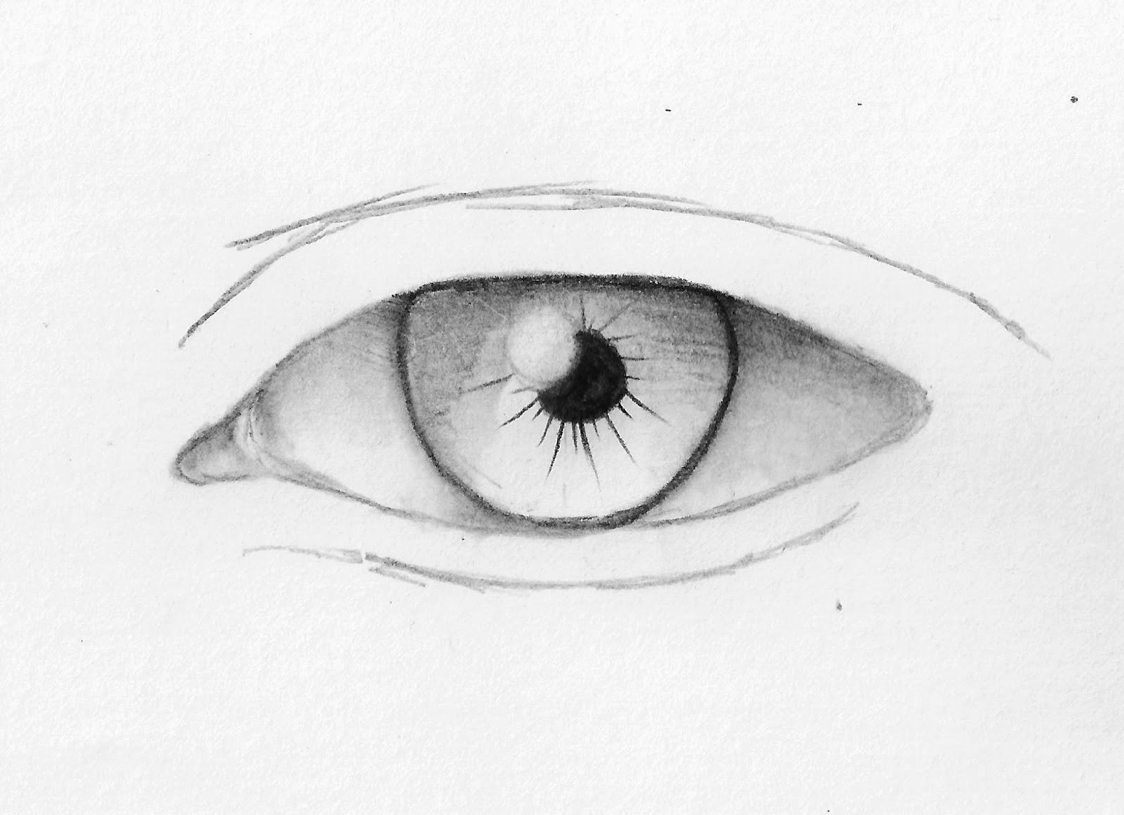 Come disegnare un occhio for Immagini teschi disegnati