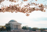 My Early Retirement Journey - Travel Hack DC