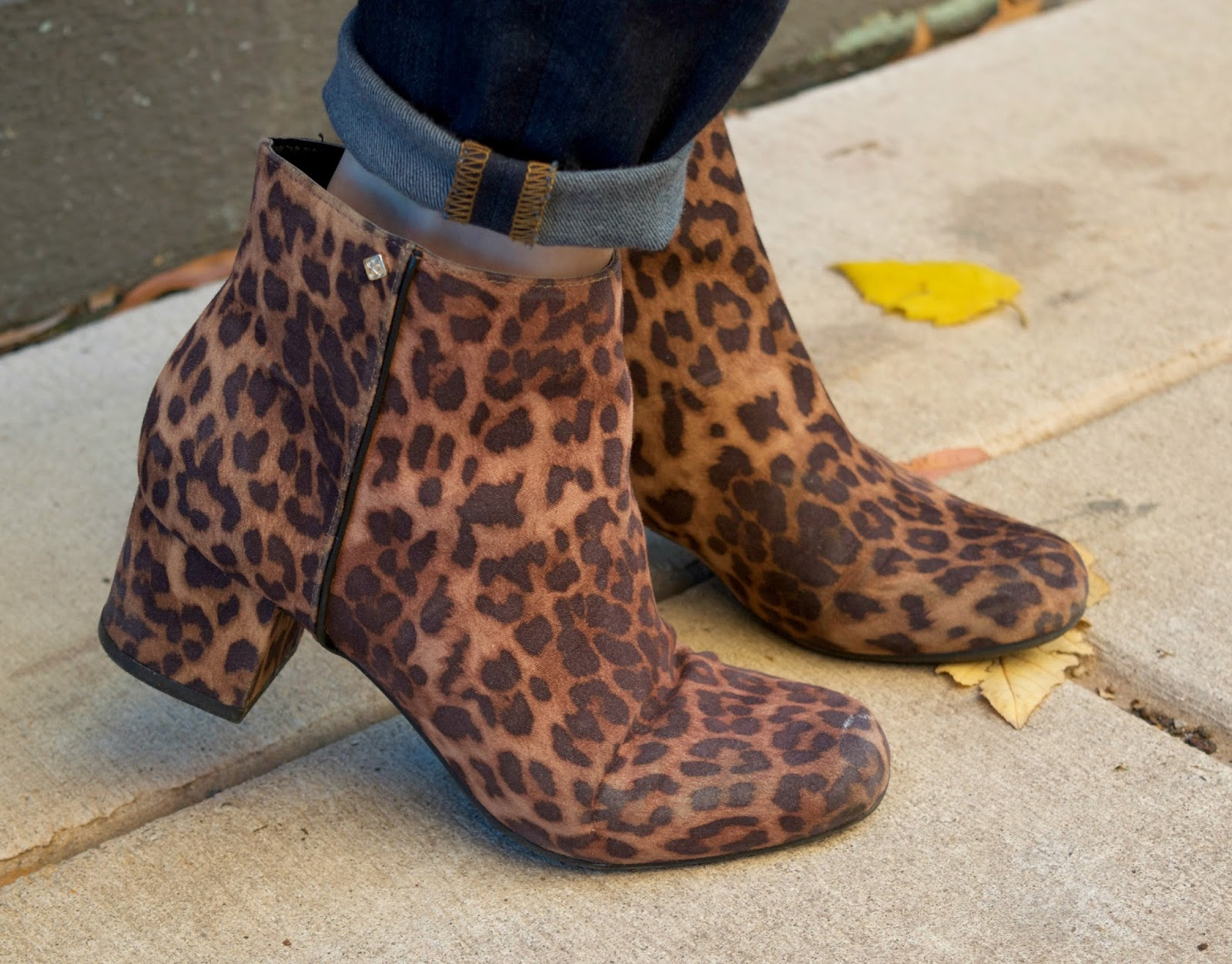 34161e4fee2f Sam & Libby leopard booties - target leopard booties - leopard print shoes  - cheetah print ...