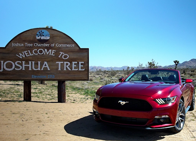 2015 Ford Mustang Convertible Joshua tree
