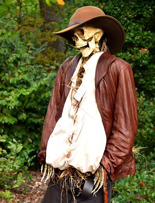 "Scarecrows in the Garden | ""Indiana Bones"" 