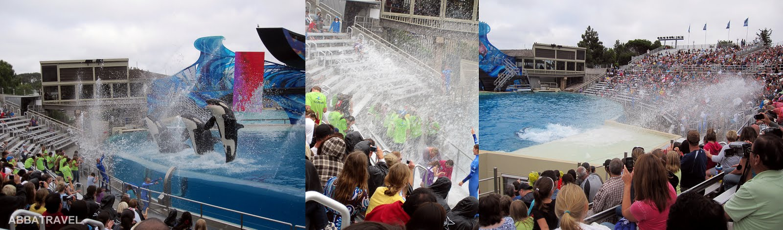 Incidents At Seaworld Parks: Los Angeles, San Diego