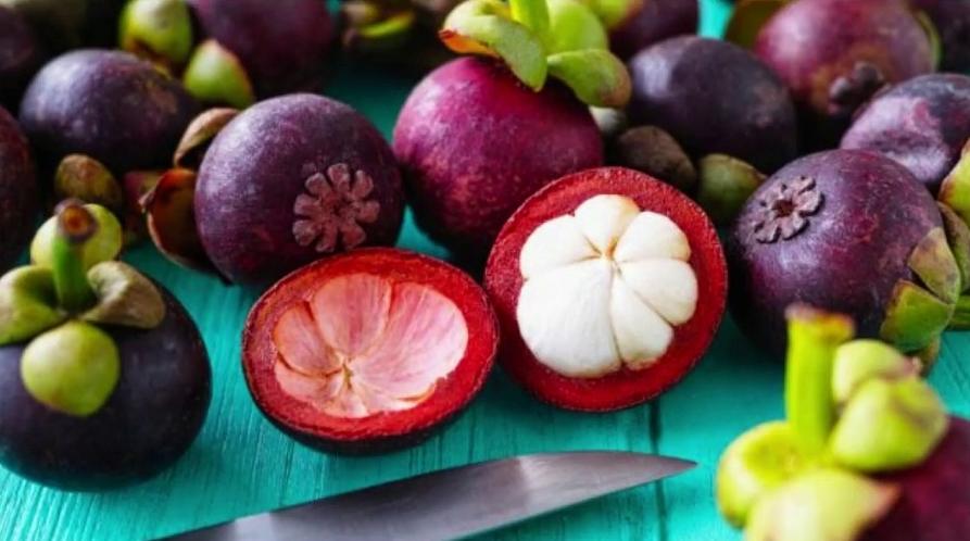 Os Benefícios do Mangostão para a Saúde Foram Revelados