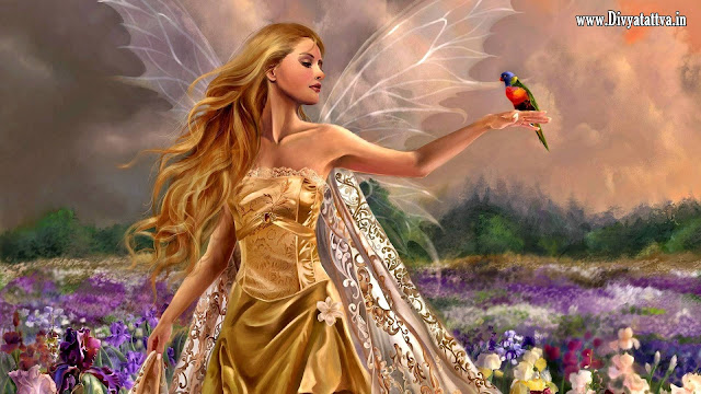 Fairies Wallpapers, Fairies Backgrounds, Fairies Images