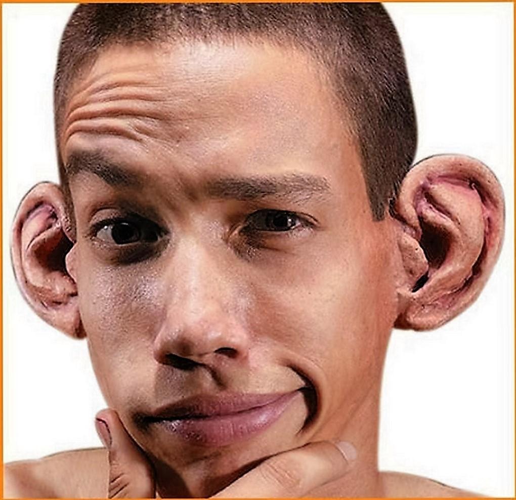 Fieggentrio: Hoe komt het dat je oren je hele leven ...  Oren