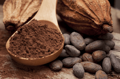 Cara Budidaya Tanaman Kakao