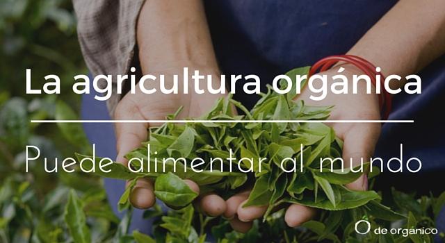 la-agricultura-organica-puede-alimentar-al-mundo