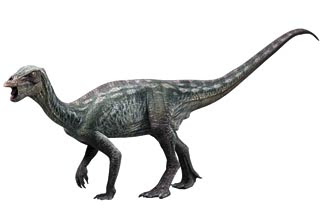 Species New to Science: [Paleontology • 2010 ...