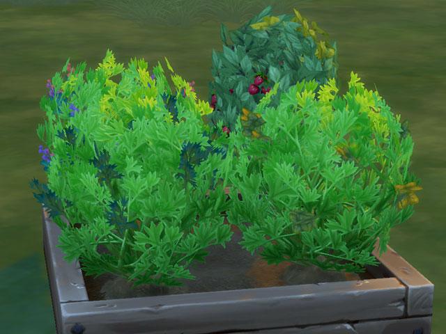 как ухаживать за растениями в симс 4,
