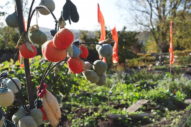 a tree bearing knitted fruits in ford park, ulverston