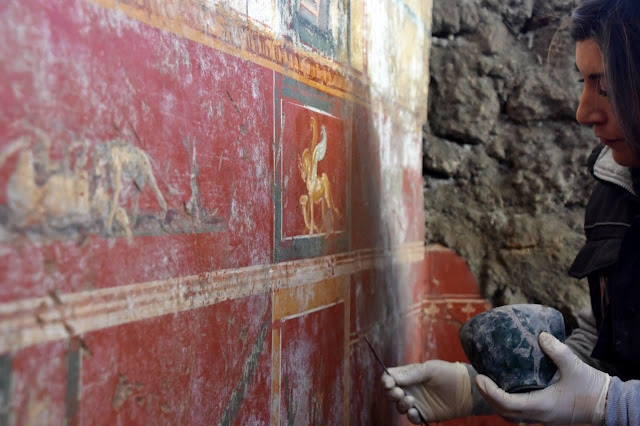 Stunning Narcissus fresco uncovered at Pompeii