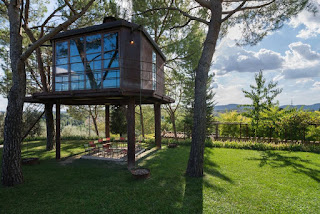 air b n b treehouse in florence italy