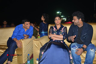 Nenu Local Audio Launch Stills  0214.JPG