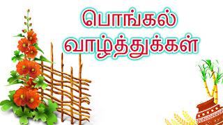 pongal in tamil