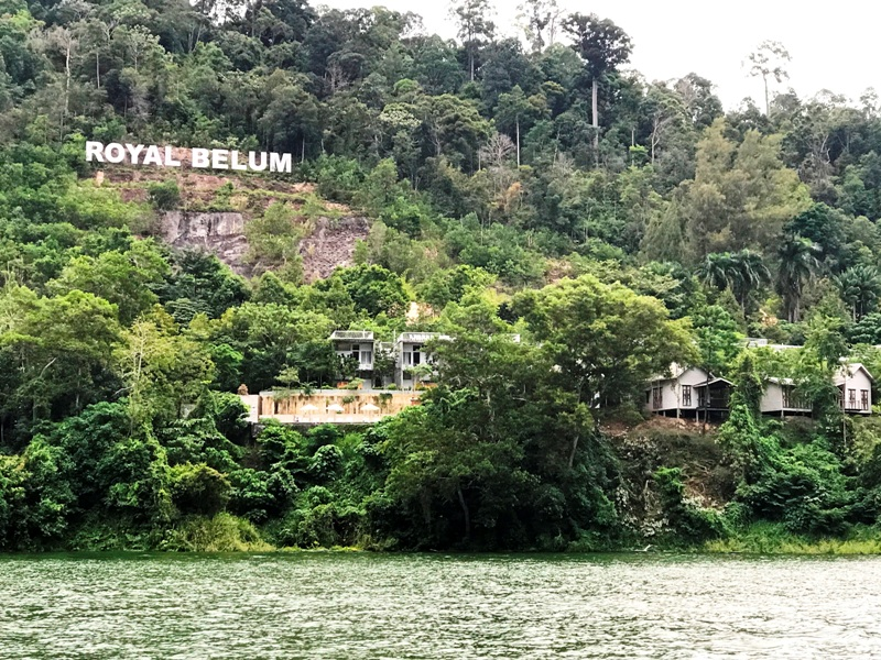 royal belum state park 4 star rainforest resort