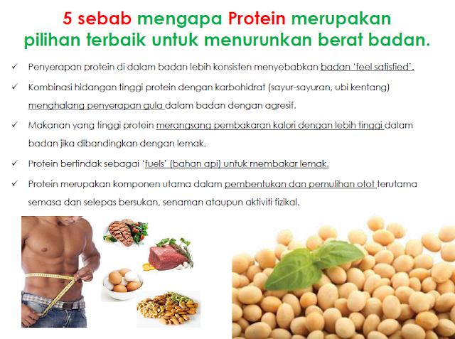 Image result for lima sebab protein pilihan terbaik untuk menurunkan berat badan