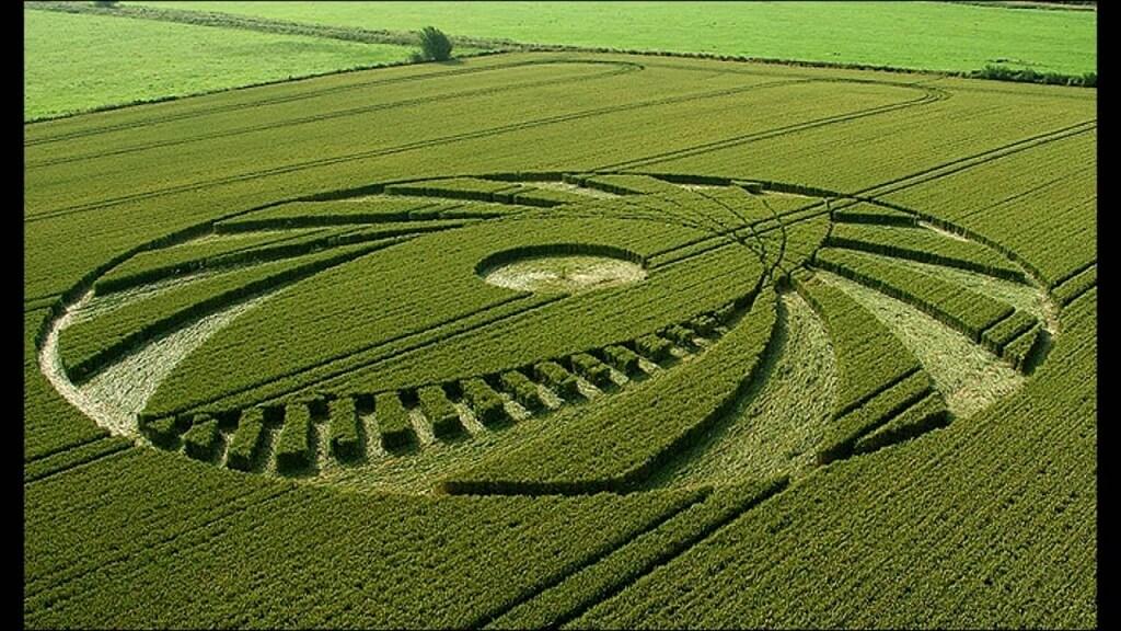 Misteri Crop Circle Ciptaan Makhluk Asing?