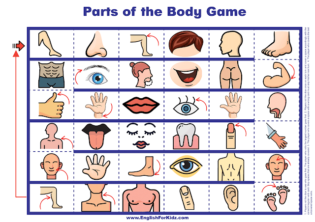 Parts of the body game - images board - printable English learning resources