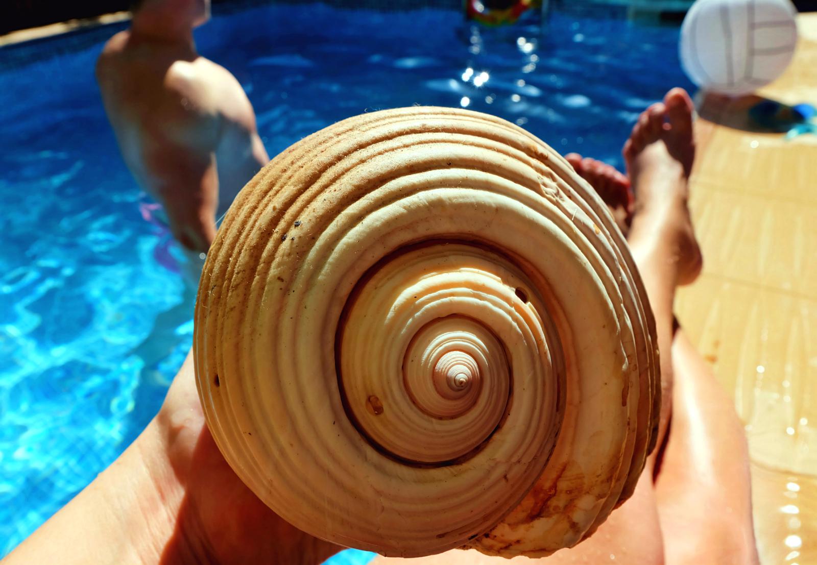 willa z basenem przy Atenach