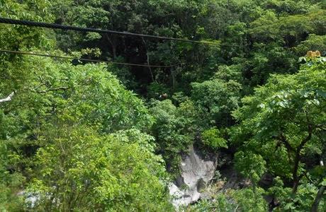 canopy_Puerto_Vallarta