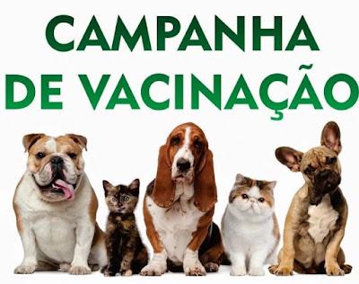 Campanha de Vacinação para Cães e Gatos segue até 25 de agosto em Cajati