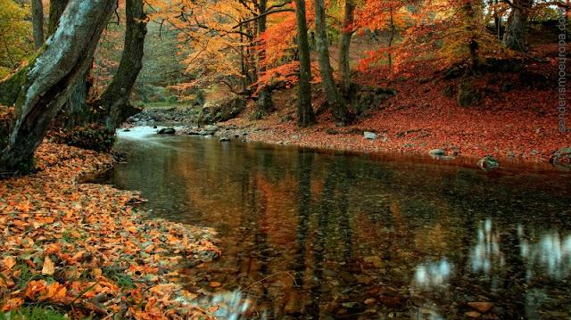 otoño en los Balcanes, Bulgaria