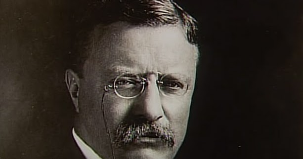 woodrow wilson and theodore roosevelt Theodore roosevelt and woodrow wilson influenced franklin roosevelt's new deal ideas - 984102.