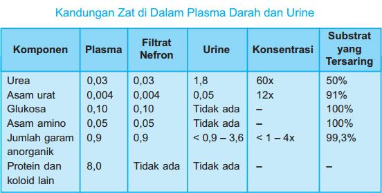 kandungan zat pada urine