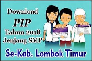 Download PIP Tahun 2018 Jenjang SMP Se-Kabupaten Lombok Timur