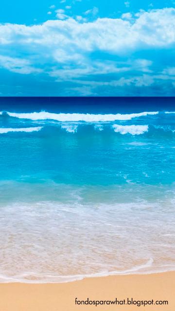 Fondo de un bonito mar