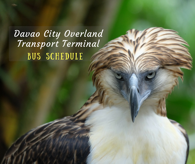 Davao bus schedule from Ecoland Terminal