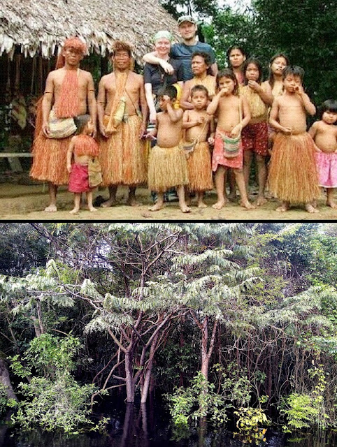 A photo of a Piraha tribe (above) and the Amazon jungle where they live (bottom)