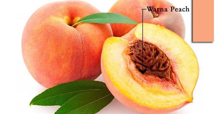 Pengertian Warna Peach dan Contohnya  GRAFIS  MEDIA