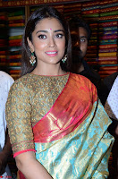 Shriya Saran Looks Stunning in Silk Saree at VRK Silk Showroom Launch Secundrabad ~  Exclusive 008.JPG