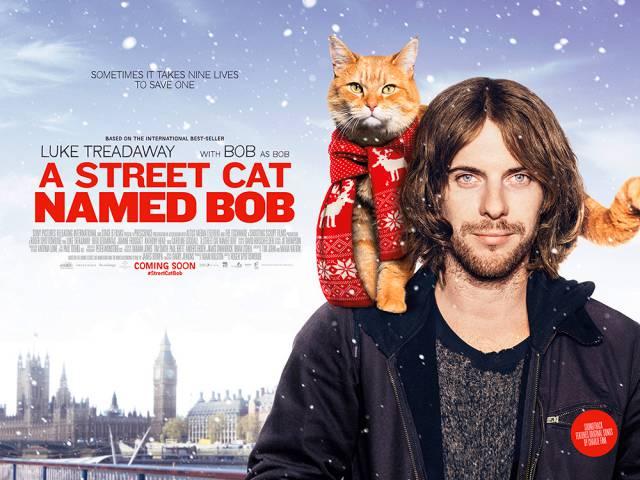 Chú Mèo Đường Phố Tên Bob