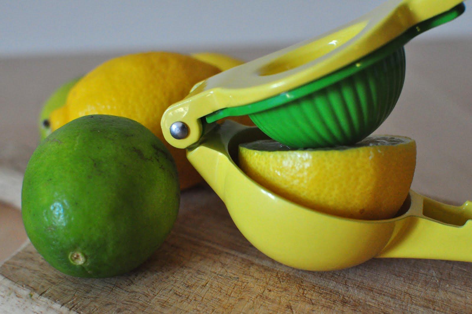 America S Test Kitchen Best Lemon Squeezer