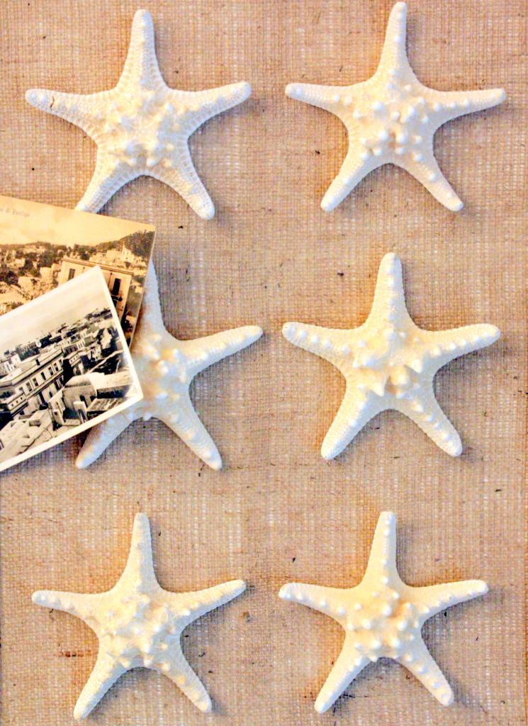 Sweet Something Designs: DIY Starfish Art