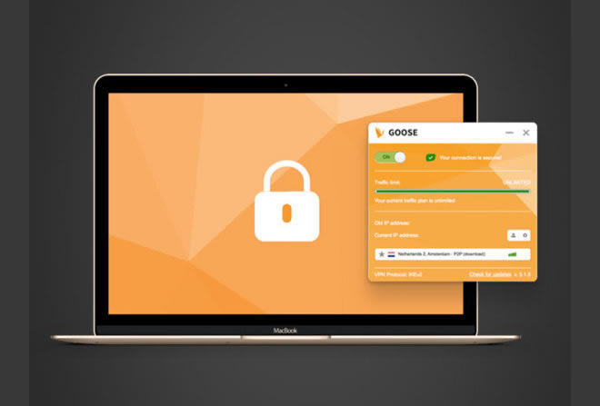 GOOSE VPN Discount Coupon for 5-Yr Subscription