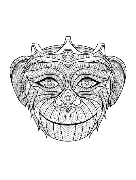 Free Coloring Page Coloringadultafricamonkeyhead Funny Monkey