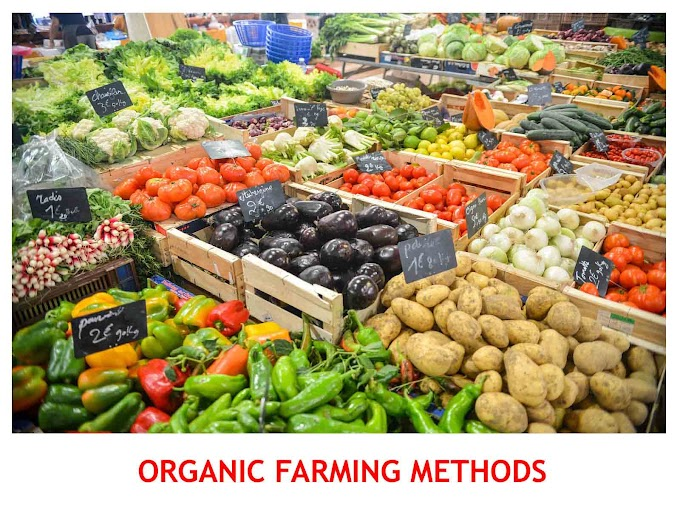 ORGANIC FARMING METHODS | DEFINITION, TYPES, ADVANTAGES AND IMPORTANCE