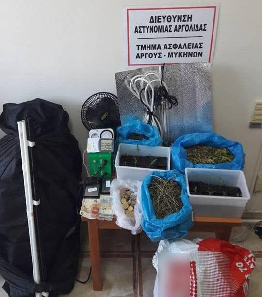 Συνελήφθησαν δύο άτομα με 14 δενδρύλια και ένα κιλό κάνναβης στην Αργολίδα