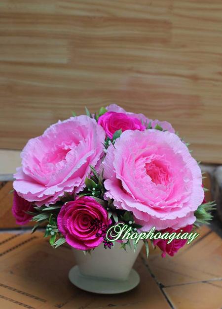 hoa giấy nhún đẹp