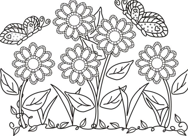 Gambar Mewarnai Bunga Dan Kupu Kupu Gambar Mewarnai Bunga